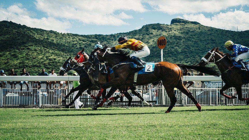 Long Horse Riders