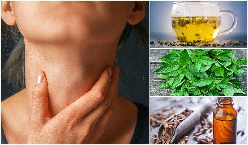 Herbal Remedies for Throat Infection