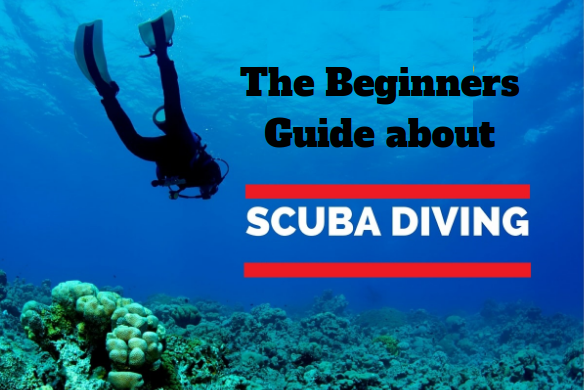 The Beginners Guide about Scuba Diving