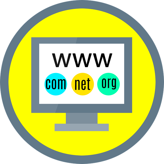 How premium domain names help to develop business and commercial marketing?