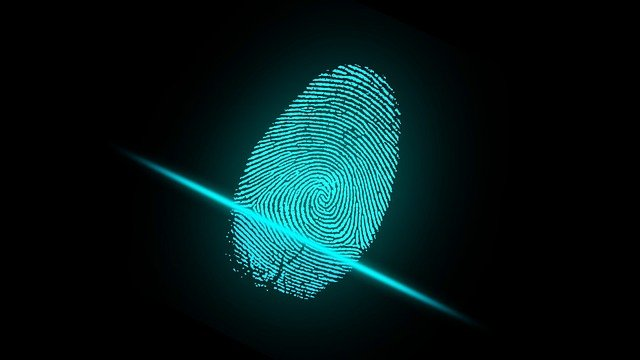 Top 5 Biometric and ID Verification Services Providers