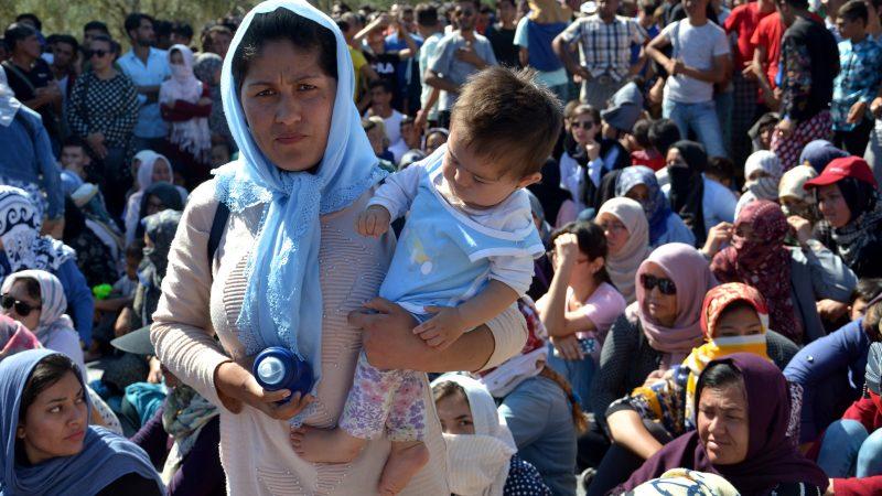 Asylum seeker fingerprint plans in Jeopardy?