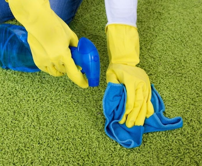 5 Carpet Cleaning Tips for the Summer